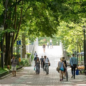 Penn students walking on Locust Walk in the summer