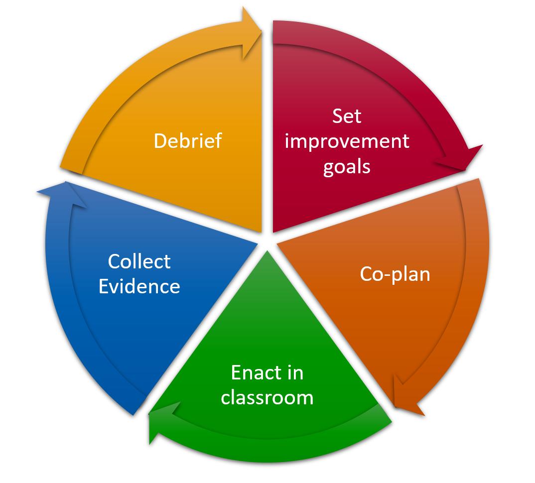 Set improvement goals, co-plan, enact in classroom, collect evidence, debrief