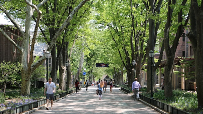 Image result for penn campus
